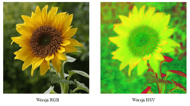 Porównanie modelu RGB oraz HSV.