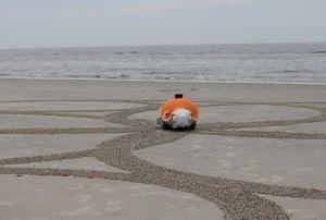 Beachbot upiększy plażę