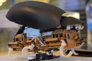 Robot-karaluch wykonuje precyzyjne skoki