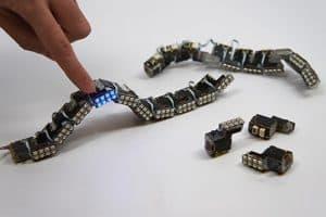 ChainFORM, czyli robotyczny łańcuch modularny