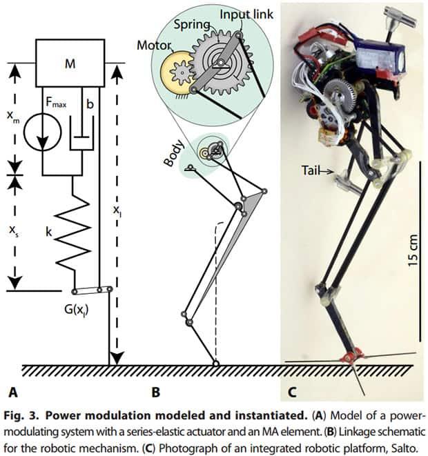 System modulacji mocy w robocie Salto: (A) model, (B) schemat, (C) fotografia.