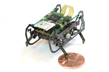 Nowy robot karaluch – trzy razy szybszy od poprzednika!