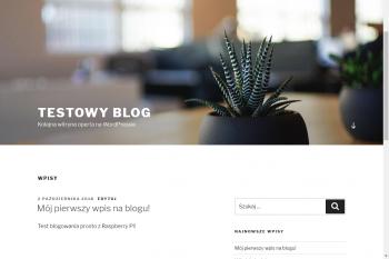 Podgląd wpisu blogu.