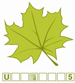 Przykładowy liść z jednym zamazanym znakiem kodu.