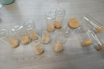 Szklane fiolki pełniące funkcję osłony