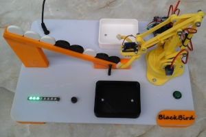 BlackBird - model manipulatora segregującego