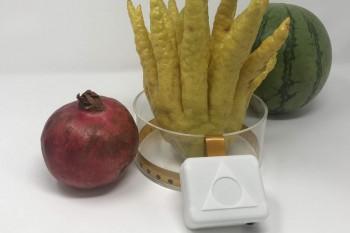 Tanie urządzenie do obrazowania biomedycznego DIY