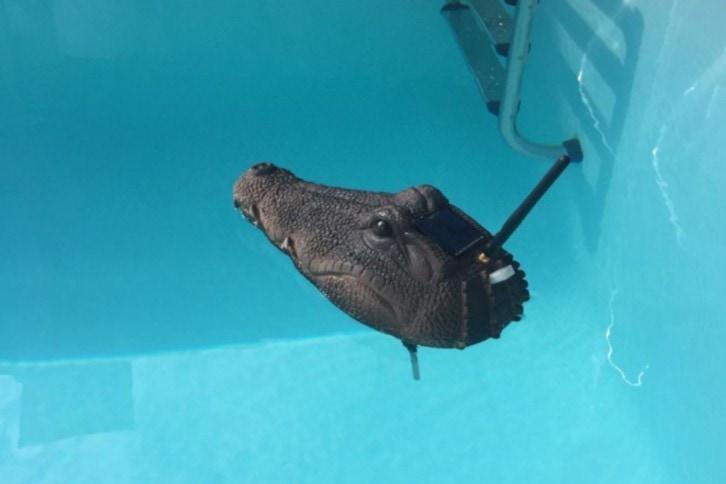 Gotowy pływający po basenie projekt