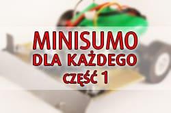 minisumo.jpg.89c7557c0840db87ec1230604833a0e0.jpg