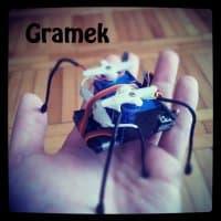 Gramek1.thumb.jpg.d58ddb8f1f85880bd85153f5d66c76a1.jpg