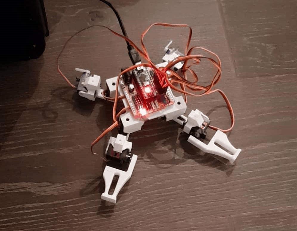 Mały quadroped - czworonożny robot kroczący