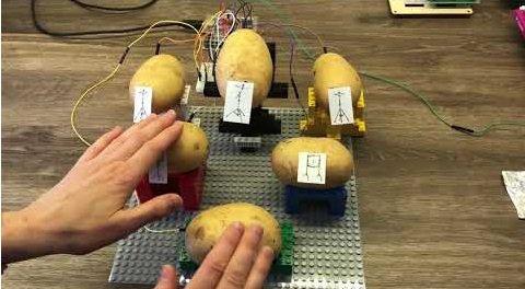 Perkusja i pianino na ziemniakach