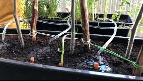 System podlewania balkonowego ogródka