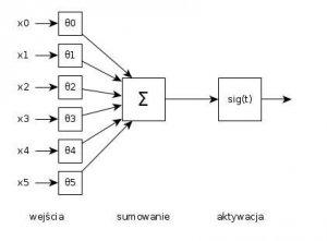 neuron.thumb.jpg.22928841065a54c8776fd0f92f7802fa.jpg